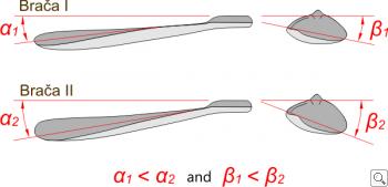 Brača I and Brača II Blade Shapes